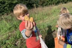 09_2020_Kartoffelnsammeln_Achim_022