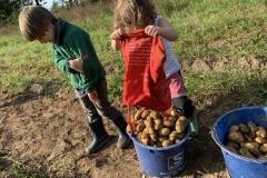 09_2020_Kartoffelnsammeln_Achim_036